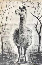 Vigogne Pérou ou Chili c 1958 encre  signée Elsa Desportes peintre animalier