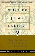What Do Jews Believe? : The Spiritual Foundations of Judaism by David S. Ariel