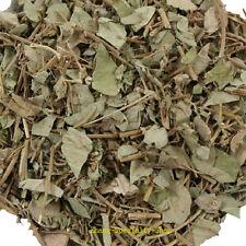 Chinese Herb Wild Lysimachia Christinae Hance Jin Qian Cao 250g