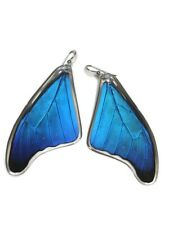 Real Butterfly wings earrings, Morph Cacica  Butterfly Jewelry