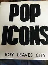 Pop Icons Boy Leaves City 12 Inch Vinyl Single Record Rare. Mint Punk Indie Rock