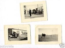 Algérie Sidi-Aïssa militaire jeune homme 3 photos argentiques anciennes an.1950