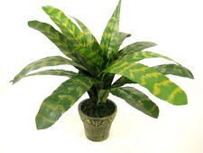 Potted Artificial Plant Vriesea Heiroglyphica 'King of Bromeliad' ~ house plant