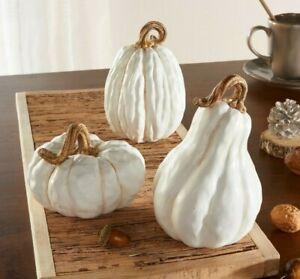 """Kürbis """"White"""" 3-er Set, Herbstdekoration, Kürbis, Windlicht, Pumpkin"""