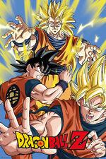 Cartel De Dragon Ball Z-Goku-Nuevo Cartel de animación japonesa FP4011