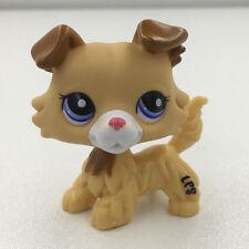 Littlest Pet Shop Collie DOG # 2452 Cream Tan Puppy LPS Kid Boys Figure Toy Rare