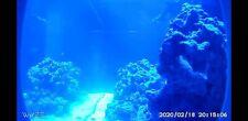 Aquarium Camera Mount for Wyze Wifi Camera V2 in a Custom Color 3D Printed