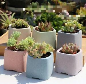 6pcs Candy Colour Terracotta Breathable Succulent Pot Set Brand New Craft
