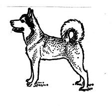 Dog Alaskan Husky Standing My Heart Stamps For You Cling Mounted Rubber Stamp
