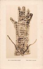 TOUTENKHAMON  - the king's glove -