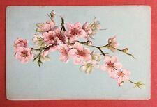 CPA. Branche Fleurs Cerisier ? Pommier ? Gaufrée. Embossed. Années 1900.