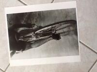 rare grande PHOTO ancienne Velo Cyclisme  TOUR De France 1967 Equipe BIC