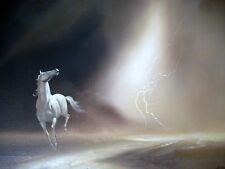 Original Oil Painting HORSE White Stallion Running VTG Mid Century Listed Bodner