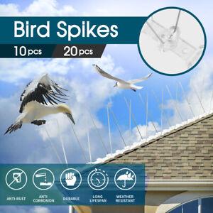 10/20PCS 10x 50cm Anti Narrow Bird Spikes Pigeon Deterrent Repellent Stainless