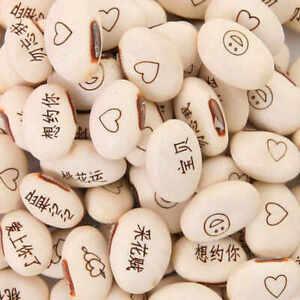 5 Magic Bean Plant Seeds New Rare Fun Message Gift Bonsai Decorative for Garden