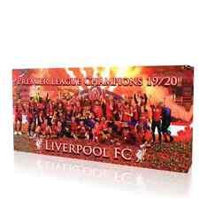 Liverpool Fc Premier League Champions Framed Canvas Print