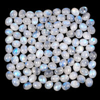 502.90 Cts/110 Pcs Natural Rainbow Moonstone Blue Shines Cabochon Gemstones Lot