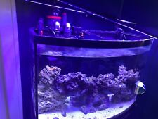 Saltwater 35 gallon tank includes everything pictured-very good condition