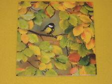 5 Servietten Meisen Herbst gefärbte Blätter Serviettentechnik Vogel Vögel Ast