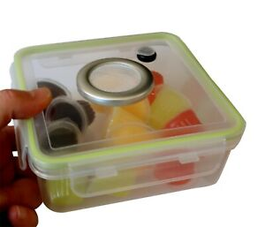Insect Jelly Pots,Beetle Jelly Pots - 12 Mixed Jellies With Vented Enclosure