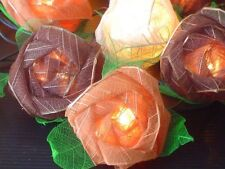 Mixed Browns Rose Flowers Mains Plug Fairy Lights with 20 Roses