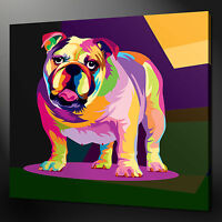 BULLDOG CANVAS PRINT PICTURE ABSTRACT WALL ART HOME DECOR FREE FAST DELIVERY