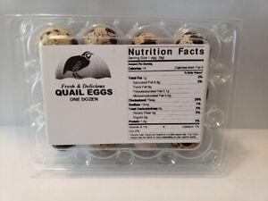 Quail Egg Cartons 100 Pack Each 12 Small Trays,Quail Egg Cartons Cheap Bulk Reusable,Recyclable Plastic Egg Carton for Refrigerator for Small Quail Eggs,Only Cartons
