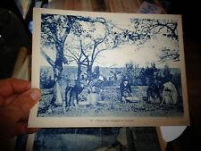 18x24cm Image Pédagogique Récolte des Chataignes en Limousin : Ph Daudrix Sarlat