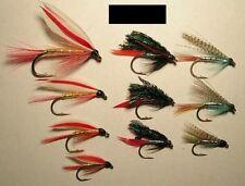 10- Brook Trout assortment - Wet flies for  Brookies