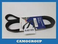 Belt Service Auxiliaries V-Ribbed Belts Dongil Fiat Doblo Palio Stitch 1815K6