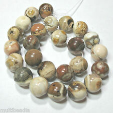 "Fossilized Petrified Wood Opalite 16mm Chunky Round Big Beads 7.5"" Natural Stone"