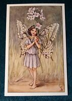CICELY MARY BARKER FLOWER FAIRIES POSTCARD, THE LADY'S SMOCK FAIRY OF THE SPRING