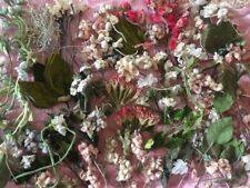 Huge Lot Of Antique Millinery Flowers 1930s 1940s Dolls Dresses Velvet Silk Vtg