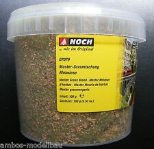 (13,99 €/100g) encore 07079 Master grasmischung almwiese, 2,5-6 MM, 100 g boîte