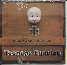 TEENAGE FANCLUB What You Do to me PROMO CD Single SEALD