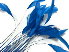 1 Dozen - TURQUOISE Stripped Rooster Coque Tail Feathers