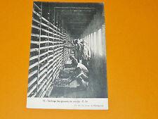 CPA 1928-1930 MADAGASCAR FRANCE COLONIES AFRIQUE SECHAGE DES GOUSSES DE VANILLE