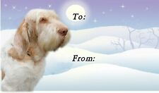 Italian Spinone Christmas Labels by Starprint - No 1