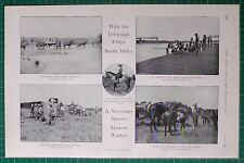1900 BOER WAR ~ TELEGRAPH CORPS SOUTH AFRICA MULE TRACTION NORVAL'S PONT BRIDGE