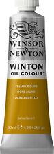 Winsor & Newton Winton Oil Colour 37 millilitre-Yellow Ochre