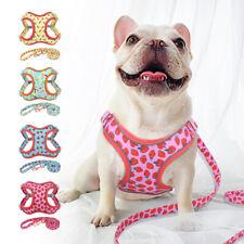 Cute Soft Mesh Dog Harness and Lead Safety Reflective Walk Vest Medium Large Dog