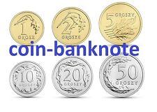 Polen Poland Polonia Pologne 1 2 5 10 20 50 groszy grosz 2015 set 6 coins UNC