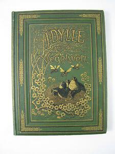 Idylle aus d. Vogelwelt v Julius Sturm Originalzeichnungen H. Giacomelli um 1850