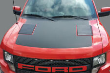 2010-14 FORD RAPTOR F-150 HOOD GRAPHICS PATTERN FROM FORD VINYL BLACKOUT 3M