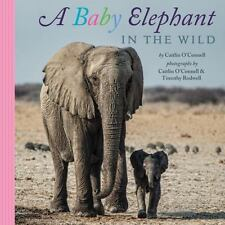 A Baby Elephant in the Wild by O'Connell, Caitlin