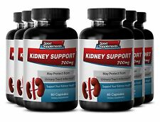 Kidney Detox - Kidney Support 700mg - With Gravel Root (Herb Powder) Pills 6B
