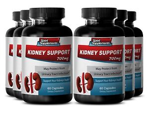 Cranberry Urinary - Kidney Support 700mg - With Gravel Root (Herb Powder)  6B
