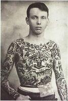 Cabinet de curiosité planche affiche A3 portrait jeune homme torse tatoué