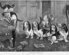 Louis Wain Cat Bassett Hound Scene Dog Painting Hoffman Real Canvas Art Print
