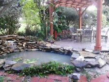 20x20 Pond liner,  40 year HDRPE. FREE SHIPPING, no undelay req, BEST SELLER!!!